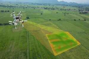 Drone imagery - NDVI