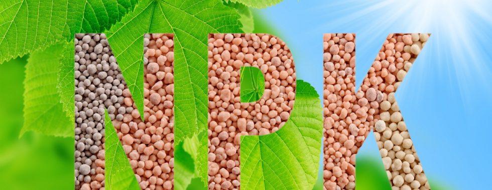 NPK plant nutrients